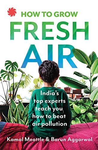 How To Grow Fresh Air: India's Top Experts Teach You How to Beat Air Pollution