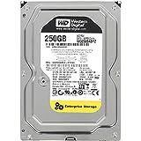 "'Western Digital RE 250GB 3.5""SATA III-Festplatte (Serial ATA III, 250GB, 8,89cm (3.5), 6,4W, 6,5W, 4,4W)"