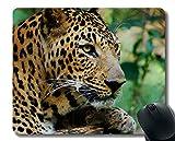 Yanteng Personalisierte Mauspads, Wildes Tier, Leopard, Raubtier Mousepad Rutschfester Gummi