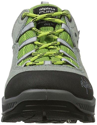 Alpina 680376, Chaussures de Randonnée Basses Femme Gris