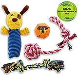 Golden Pets Hundespielzeug 4-teiliges Set I Ideal für kleine bis mittelgroße...