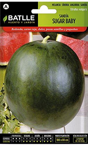 Batlle Gemüsesamen - Wassermelone Sugar baby (160 Samen)