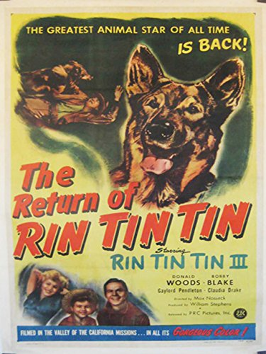 the-return-of-rin-tin-tin