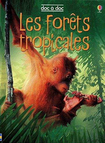Les forêts tropicales par Lucy Beckett-Bowman