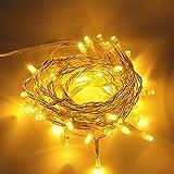 Gresonic 40er LED Lichterkette für Innen mit dem Stecker Dekoration Party Feier Weihnachten Hochzeit(Warmweiß)