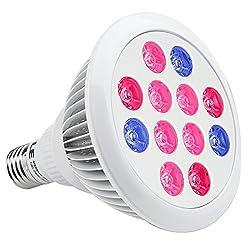 LE Pflanzenlampe 12W E27 Indoor Grow pflanzenbeleuchtung LED Pflanzenlichte Rot Und Blau Licht für Zimmerpflanzen Blumen und Gemüse