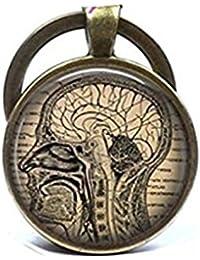 Llavero con diseño de anatomía de cerebro humano, ideal para regalo de neurólogo o estudiante de medicina
