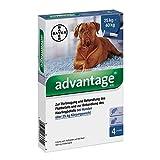 Advantage 400 für Hunde Lösung 1X4 stk