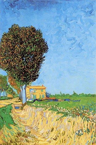 Das Museum Outlet-A Lane Nähe von Arles-Leinwand Print Online kaufen (152,4x 203,2cm) -