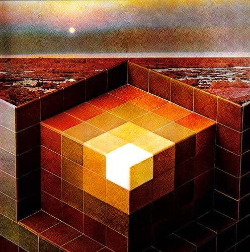 In the Future [Vinyl LP] -