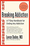 Breaking Addictio: A 7 - Step Handbook for Ending Any Addiction