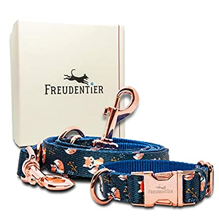 Freudentier® Hundehalsband & Hundeleine (2m) im Set – Let's get Foxy Kollektion – Leine & Halsband verstellbar – Wundervolles Design & Unempfindliches Nylon