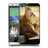 Just Phone Cases Schutz Hülle TPU Case Schutzhülle Silikon Tasche Dünn Transparent // V00004287 Katze liegend auf Holzbrettern // HTC Desire 820