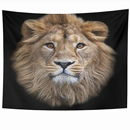 35796d7f360 Daawqee Tapiz Wall Hanging Art 60 x 50 Inches Leo Brown Head Face Asian  Lion Black Wildlife Dreadful Nature Beast Hair Mane Mask Power Design Home  ...