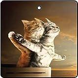 Désodorisant De Voiture Titanic Kittens