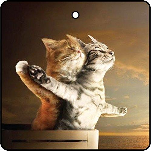 AAF Ambientador De Coche Titanic Kittens