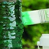 Raupenleim Grün - das Original von Schacht -, der Leimring zum Streichen, 1kg Dose
