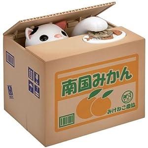 Cat Bako
