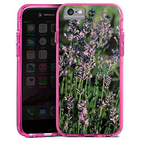 Apple iPhone 6 Plus Bumper Hülle Bumper Case Glitzer Hülle Lavendel Flowers Blumen Bumper Case transparent pink