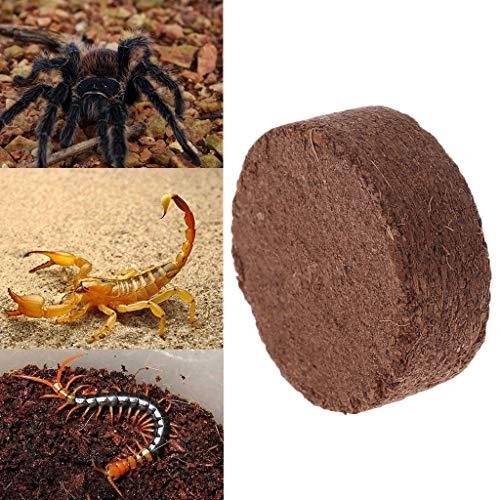 Haven shop 6 Blocks Kokosstreu für Reptilien, Reptilien, Kokosfaser, Substrat Ziegel, natürliche Bettzersteine für Terrarien, Kokosfaser, Kokosnuss-Boden, Humustorffrei - Blöcke Natürliche