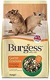 Burgess Gerbil Granola Food 750g