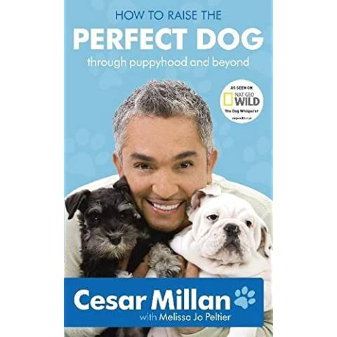 How to Raise the Perfect Dog: Through Puppyhood and Beyond by Millan, Cesar (2010) Hardcover
