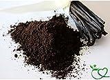 Organic Ground Vanilla Powder 50g Thrive Naturally