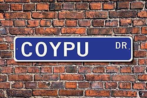 Dozili Coypu Coypu Coypu Coypu Coypu Decor Coypu Expert Coypu Study Semi-Aquatic Animal Nager Custom Street Sign Quality Metal Sign Blechschild 10,2 x 45,7 cm