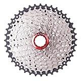 Ljourney Kassette 10 Fach Fahrrad Kassetten 11-40T Für Fahrrad/Rennrad/Mountainbike Schwarz & Silber