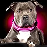 #4: Pets Empire LED dog Collar to Keep Your Dog Safe – Flashing Dog Collar 1 Piece - Color May Vary