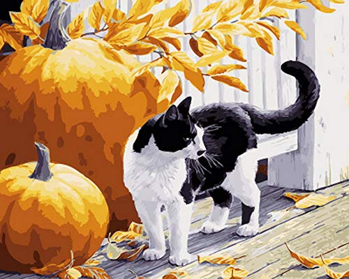 WYTTT Malen Nach Zahlen DIY Home Geschenk Ölgemälde Nach Zahlen Malen Nach Zahlen Für Wohnkultur Ölbild Malen Kitty Und Kürbis Rahmenlose 40X66 cm