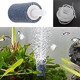 SimpleLife Diffusore dell'ossigeno di Hydroponics della pompa dell'aeratore del carro armato di pesci della pietra di bolla di aria della pietra caldo