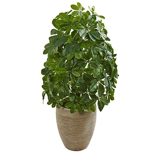 Nearly Natural 8232 Schefflera Kunstpflanze aus Seide, Sandfarben