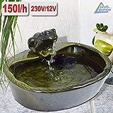 Amur GARTENBRUNNEN SOLAR BRUNNEN SOLARTEICHPUMPE SOLAR SPRINGBRUNNEN SOLAR WASSERSPIEL FROSCHPARADIES ZIERBRUNNEN Frosch VOGELBAD SOLAR Pumpe Solar Teichpumpe SOLAR Set für Garten Teich TERRASSE