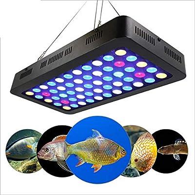 DMH 165W Dimmable Full Spectrum LED Light Fish Tank LED Reef Decoration Light,Eclairage Aquarium Nano pour Poissons Corail et Plantes en Aquarium