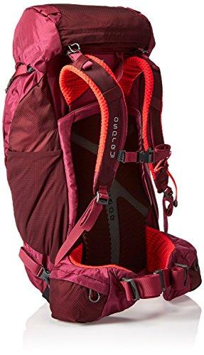 Osprey Kyte 36 Womens Hiking Backpack violett