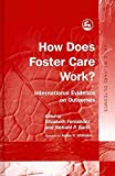 [(How Does Foster Care Work?: International Evidence on Outcomes)] [Author: Elizabeth Fernandez] published on (August, 2010)