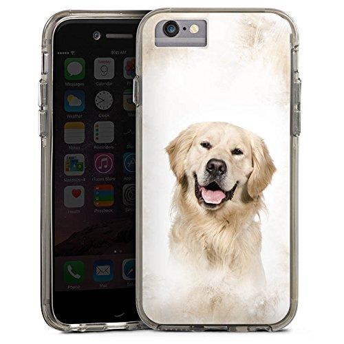 Apple iPhone 8 Bumper Hülle Bumper Case Glitzer Hülle Golden Retriever Hund Dog Bumper Case transparent grau