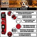 Hundehalsband Halsung aus Premium-Nylon verschiedene Farben und Groessen XS, S, M, L, XL: verstellbar, stabil, bequem, weich, farbig, fuer grosse und kleine Hunde (Leine und Geschirr separat erhaeltlich) (Farbe Schwarz, Größe XS – 1,0 x 21-30 cm) - 2
