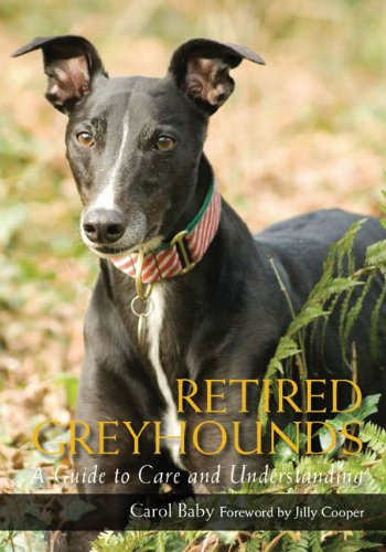 retired-greyhounds-a-guide-to-care-and-understanding