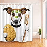 """QCWN Lovely Cat Shower Curtain Funny Kitten Showering Cat Animals Bathing Decor Fantastic Bath Decorations with Free Hooks (3, 70""""x70"""")"""