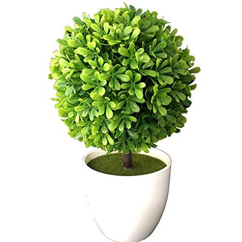 2 x Buchsbaum getopft (EDEL LINGUSTER) 25 cm , Buchsbaumkugel künstlich wie echt