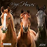 Magic Horses 2016: Kalender 2016 (Mini Calendars) (Mini Kalender)