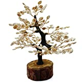 #10: Divine Magic Home Decorative Items - Gomati Chakra Tree - Good Luck Gifts for Home