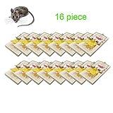 Greenty Trampa para Ratones, Trampa para Ratas - 16 Unidades faciles de Utilizar. Captura inmediatamente Las Ratones de su hogar y Oficina
