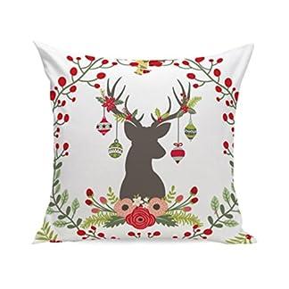 Lenfesh Fundas de Almohada, Navidad Super Soft Square Tirar Almohada cojin Decorativo Almohada Cubierta