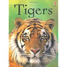 Tigers (Beginners)