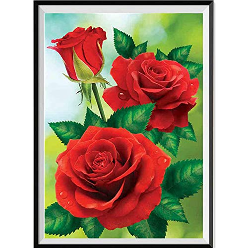 (❤Mosstars Painting 5D DIY Diamant Malerei Stickerei Malerei Teil Runde Diamant Malerei Wohnkultur Geschenk Embroidery Painting Cross Stitch Bedroom Living Room Office Decoration 40x30cm)