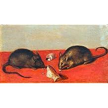 """Cuadro en lienzo: Jacques de Gheyn """"Mäuse"""" - Impresión artística de alta calidad, lienzo en bastidor, 40x20 cm"""
