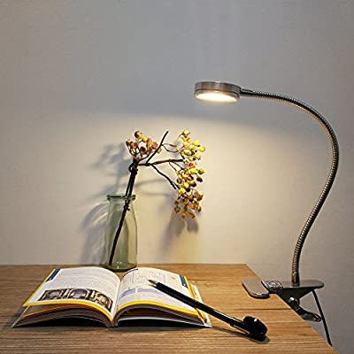 LEPOWER LED Reading Light / Light Color Changeable / Night Light Clip on for Desk,Bed Light, Bed headboard and Computers(Silver)